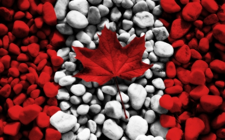 Canada-Flag-HD-Wallpapers-for-Mobile
